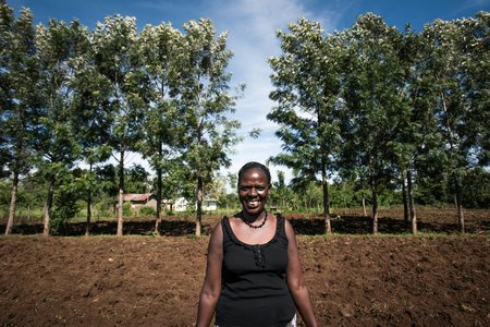Beatrice Barasa with her Grevillea trees