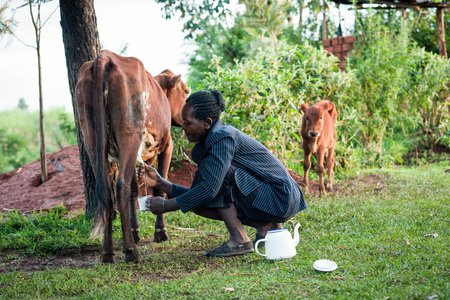 Consolata with her dairy cow in Kenya