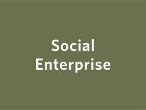 INSIGHTS_SOCIAL_ENTERPRISE