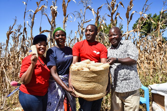 Maize group One Acre Fund