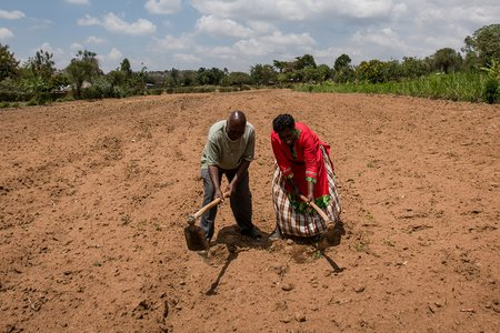 Tilling Soil in Kenya