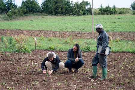 Members of our team inspect the results of a fertilizer trial in Tanzania