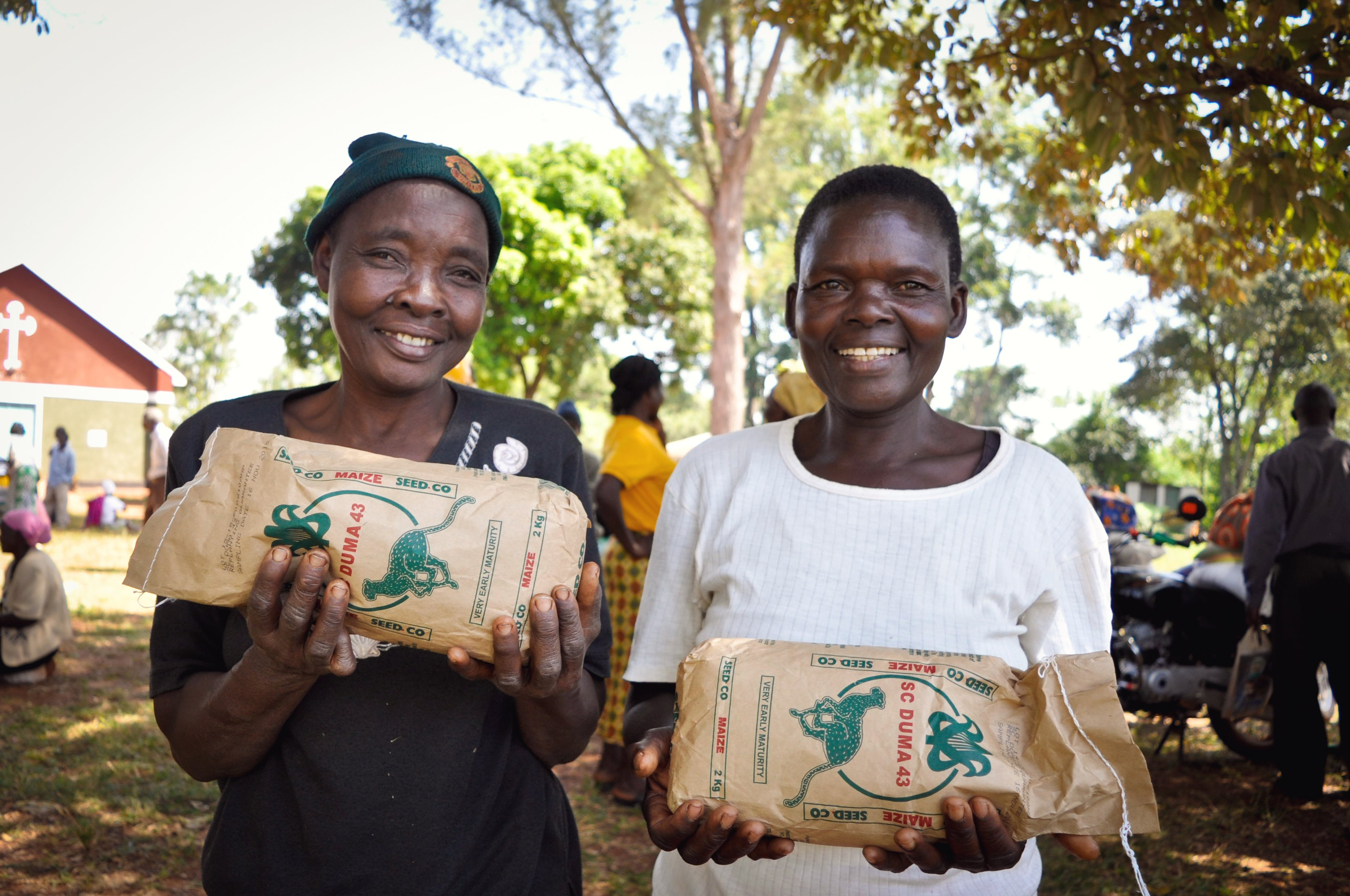Two farmers holding maize seed