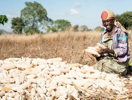 Farmer with Maize